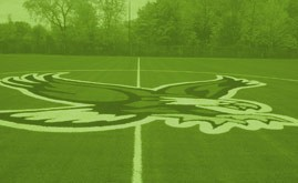 A-Turf Synthetic turf