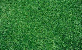 A-Turf Mono close-up view.